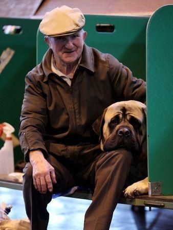 Top dogs at Crufts 2010 preview
