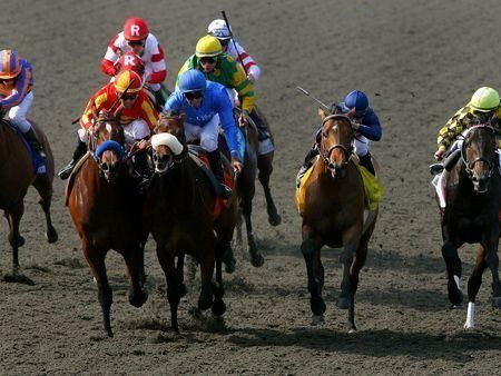 Godolphin in Breeder's Cup glory