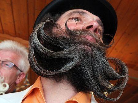 World's wackiest beards