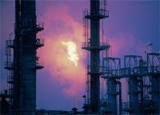 Gulf state-backed oil giants 'need more competition'