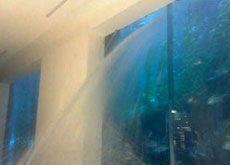 Aquarium leak sparks Dubai Mall evacuation