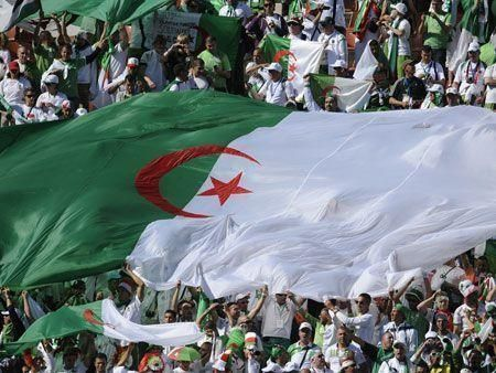 Disappointment for Algeria as team loses to Slovenia