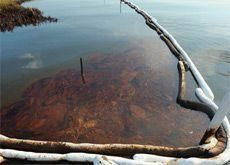 BP oil spill impact will be felt for years to come - Crescent