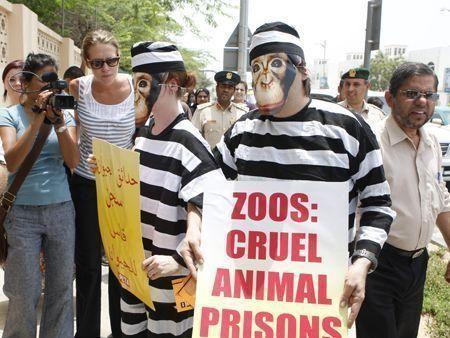 Peta protest outside Dubai Zoo
