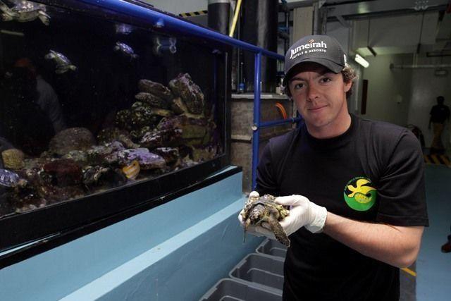 Rory McIlroy visits Dubai's turtle rehabilitation project