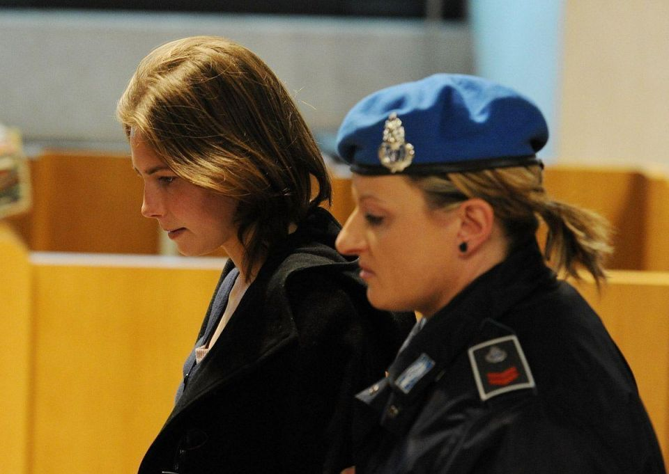 Italy court hears new witnesses in Knox appeal