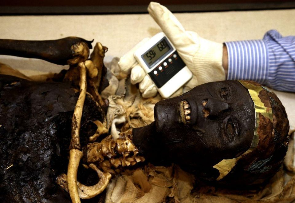 About 50 mummies found in Egypt's Valley Of The Kings