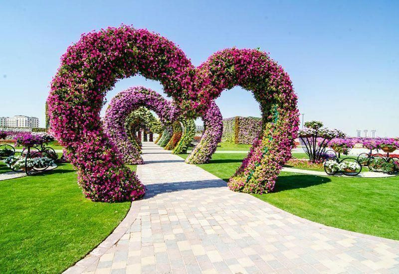 Dubai to launch world's largest vertical garden