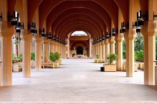 53 students injured in Saudi uni stampede
