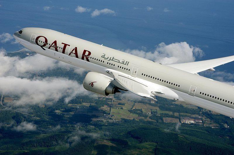 Qatar Airways passenger sues airline after being bitten by venomous spider