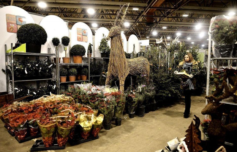 Covent Garden gears up for Christmas rush