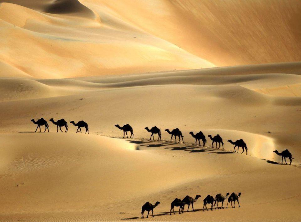 Festival showcases UAE heritage