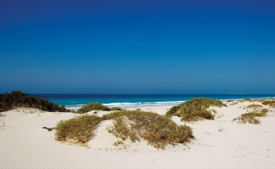Female-only beach opens in Abu Dhabi