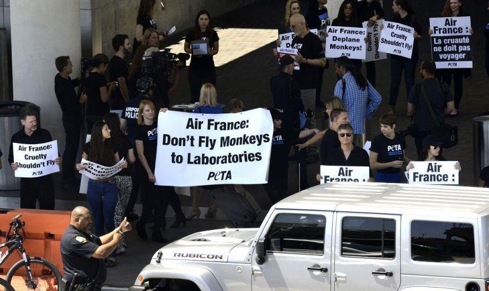 PETA's activist protests outside Air France Dubai office