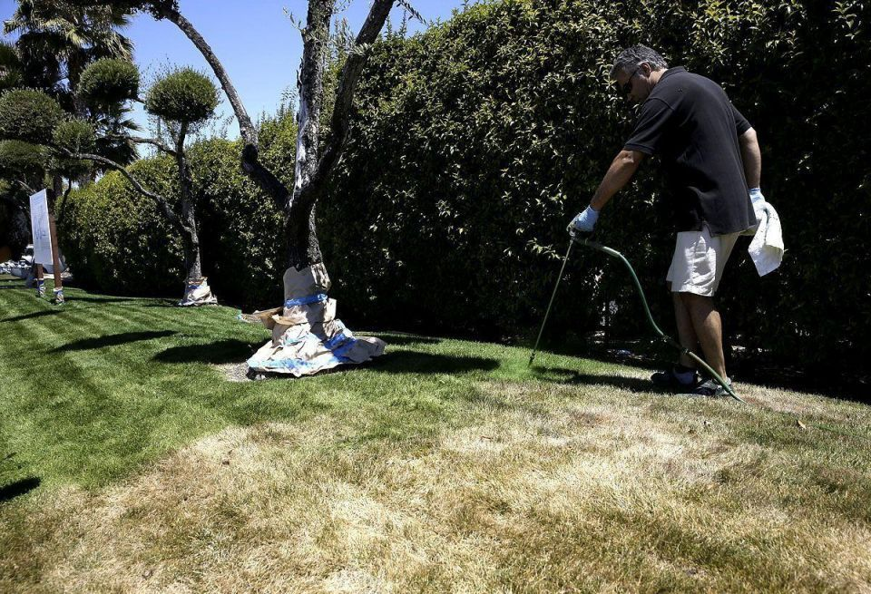 A business profits from California drought
