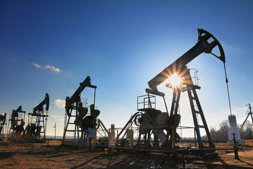 Saudi Arabia can withstand low oil prices for 'at least 8 years'