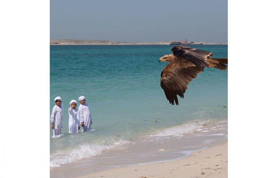Burj Khalifa chosen for eagle flight world record attempt
