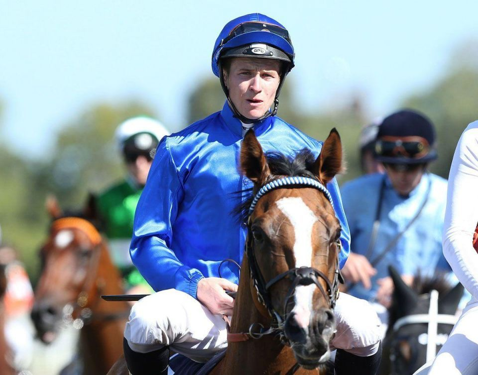 Dubai's Godolphin signs global contract with top New Zealand jockey