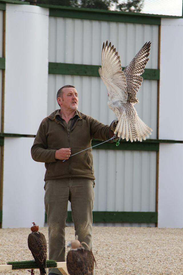 Ex-homeless man makes millions breeding racing falcons for Dubai