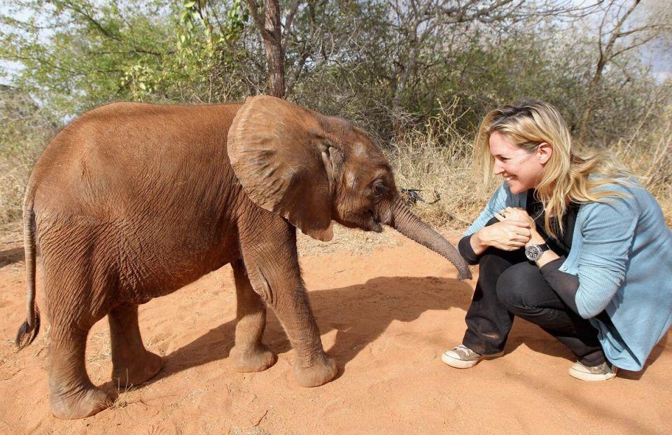 World Elephant Day celebrated