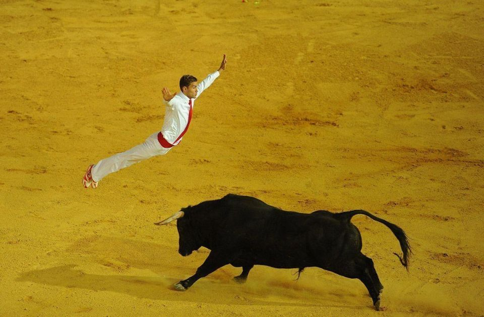 French bull jumpers perform in Spain
