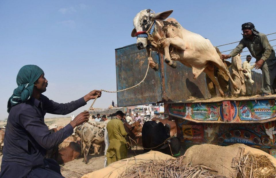 The world prepares for Eid Al Adha