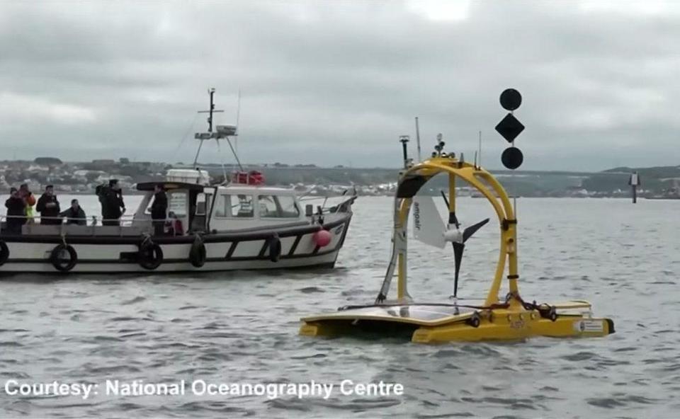 Marine robots unite in hunt for wildlife hotspots
