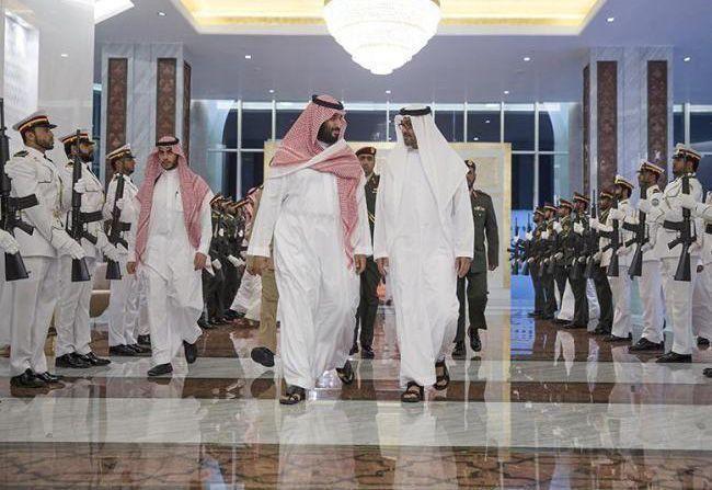 UAE, Saudi Arabia set up cooperation council