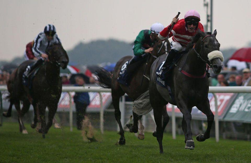 Etihad Cargo says 72 racehorses flown from England to Kuwait