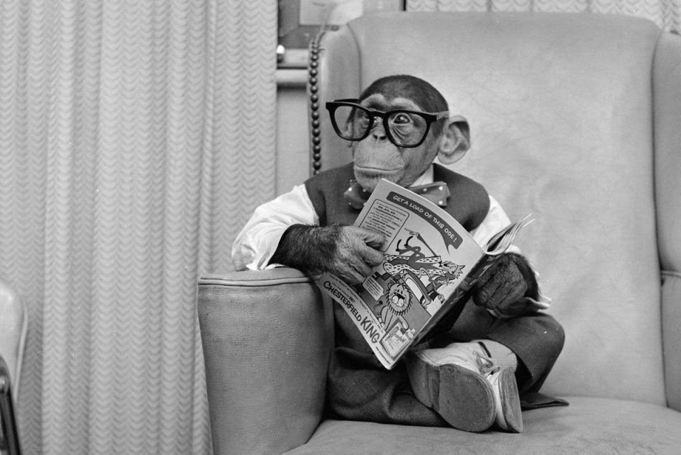 Why book smarts are overrated