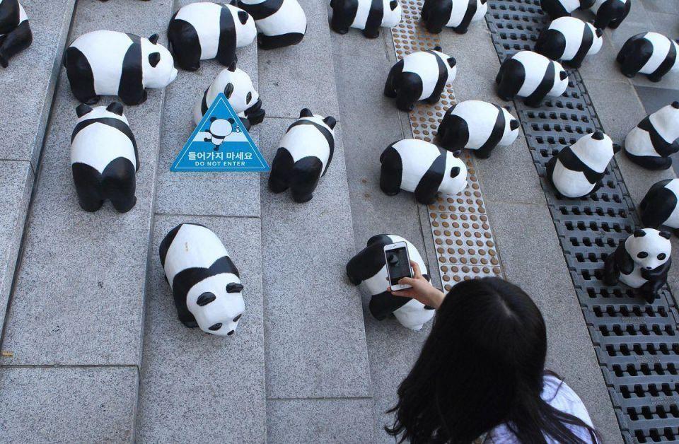 1600 PANDAS+ exhibition in South Korea