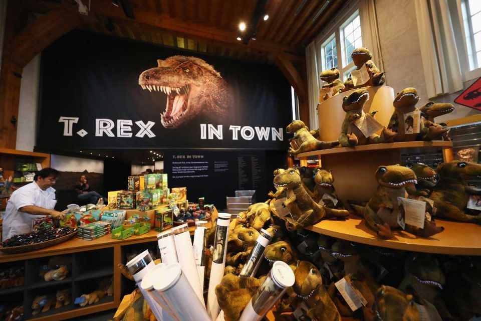 In pictures: T-Rex exhibition at the Natural History Museum of Leiden in Netherlands
