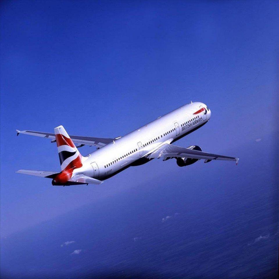 Passenger bitten on BA flight from Dubai to Heathrow