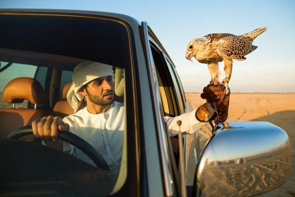 Sheikh Hamdan's bid to revive the glorious Arab sport of falconry