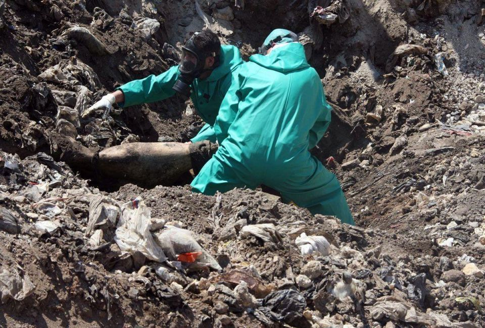 Over 230 bodies found in mass grave in eastern Syria