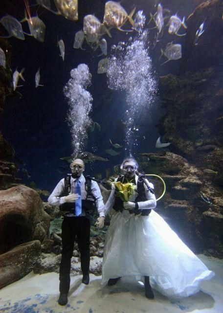 Couple declare their love with underwater blessing