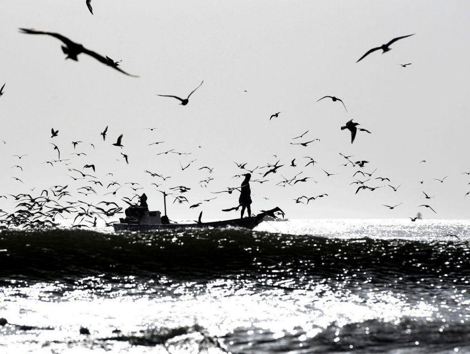 Gulf in focus: Emirati fishermen keep traditions alive