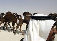 UAE refutes 'underage camel jockeys' claims