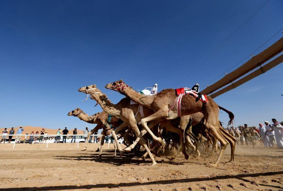 In pictures: UAE's Liwa Sports Festival at Moreeb Dune in Abu Dhabi