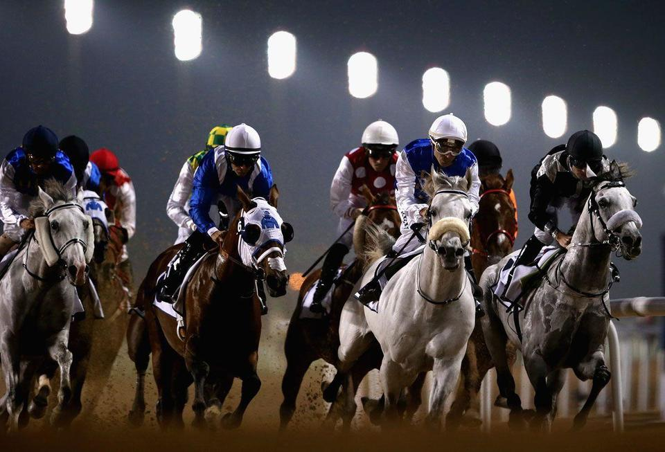 UAE bans spectators from horse race meetings amid Covid-19 fears