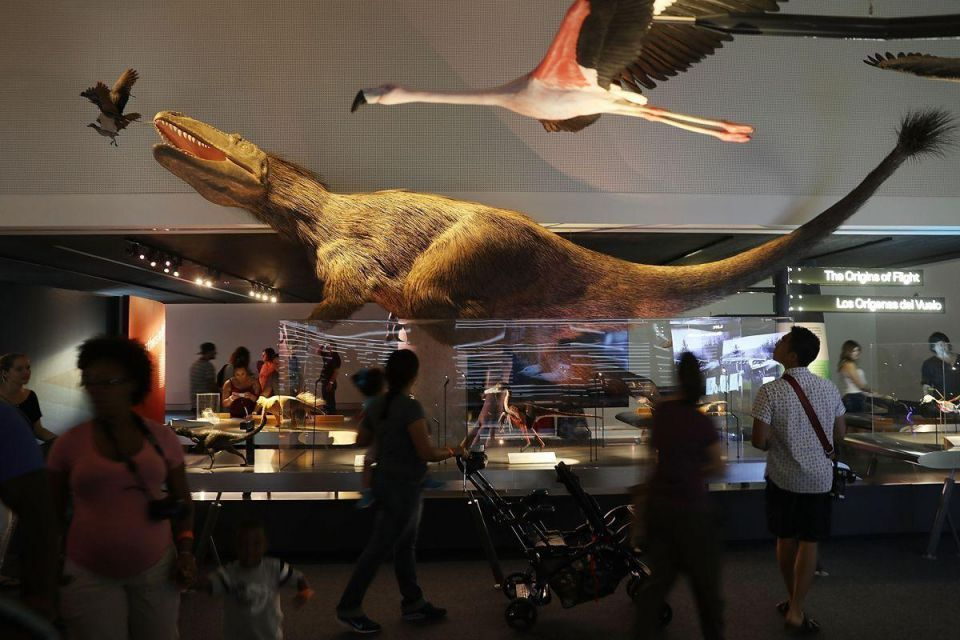 In pictures: Long-awaited Miami's Frost Museum of Science opens