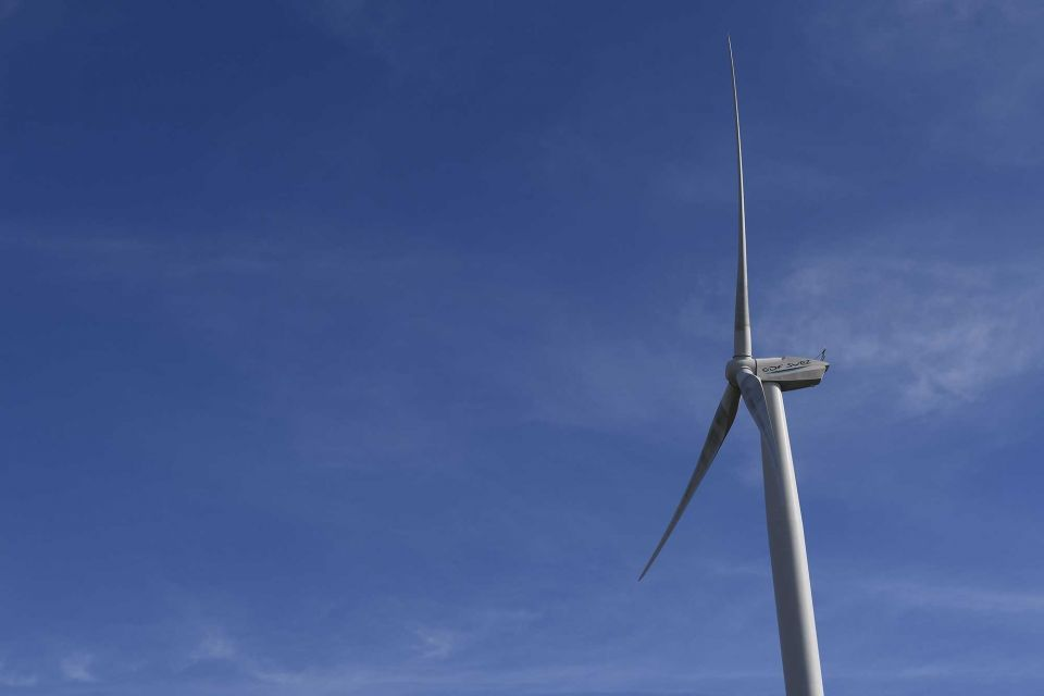 Saudi Arabia receives four bids for first wind power project