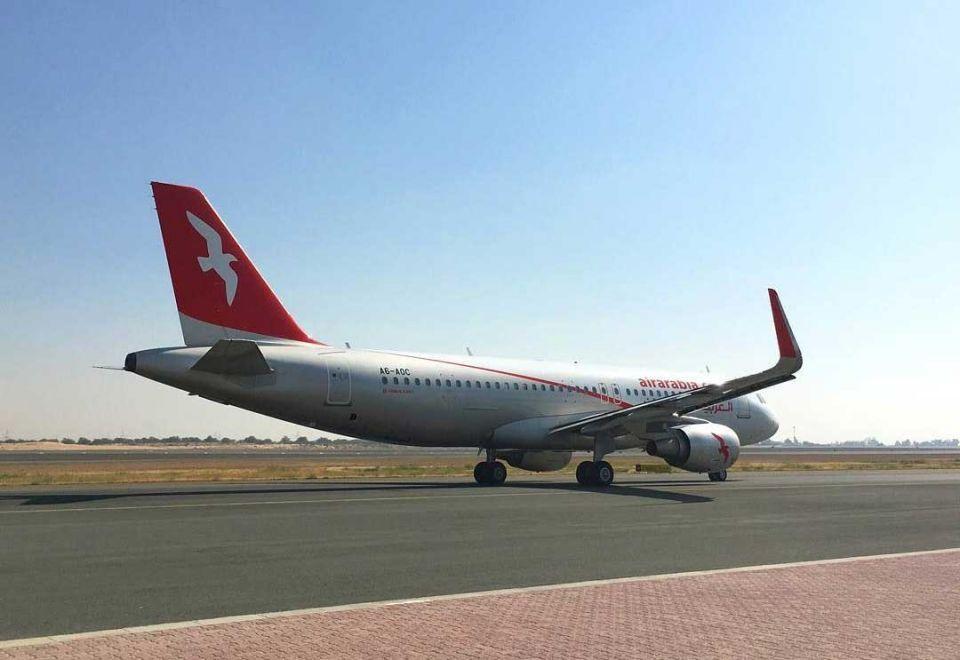 Bird strike grounds Air Arabia flight