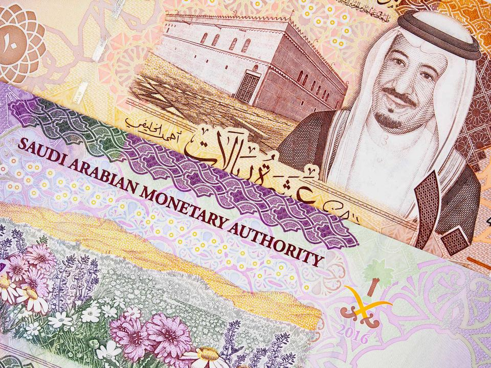 Saudi private sector growth subdued in February
