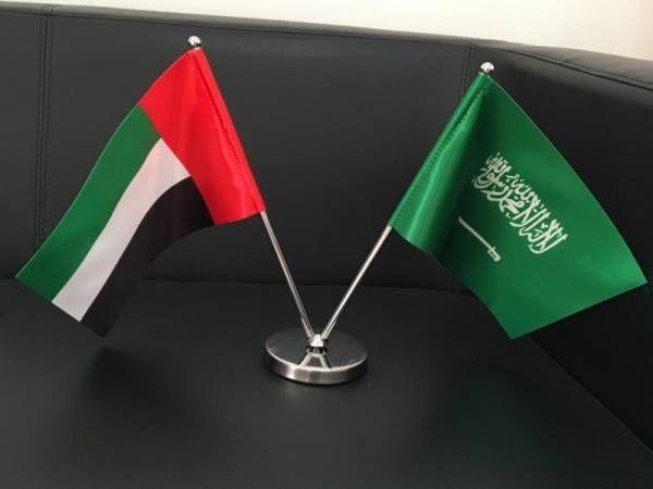 UAE, Saudi Arabia announce plan for new alliance