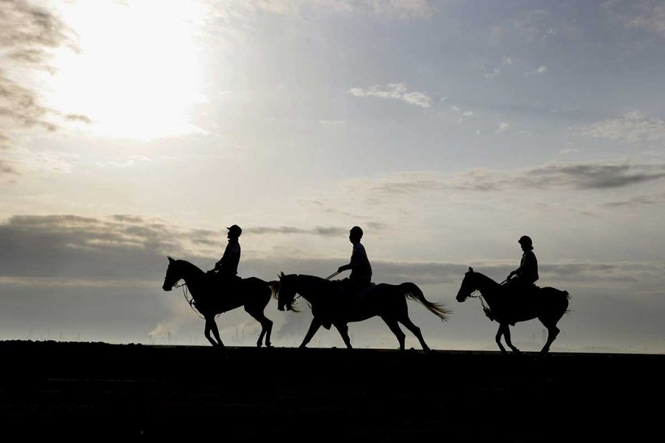 Qatar said to owe over $1m to UK horse trainers