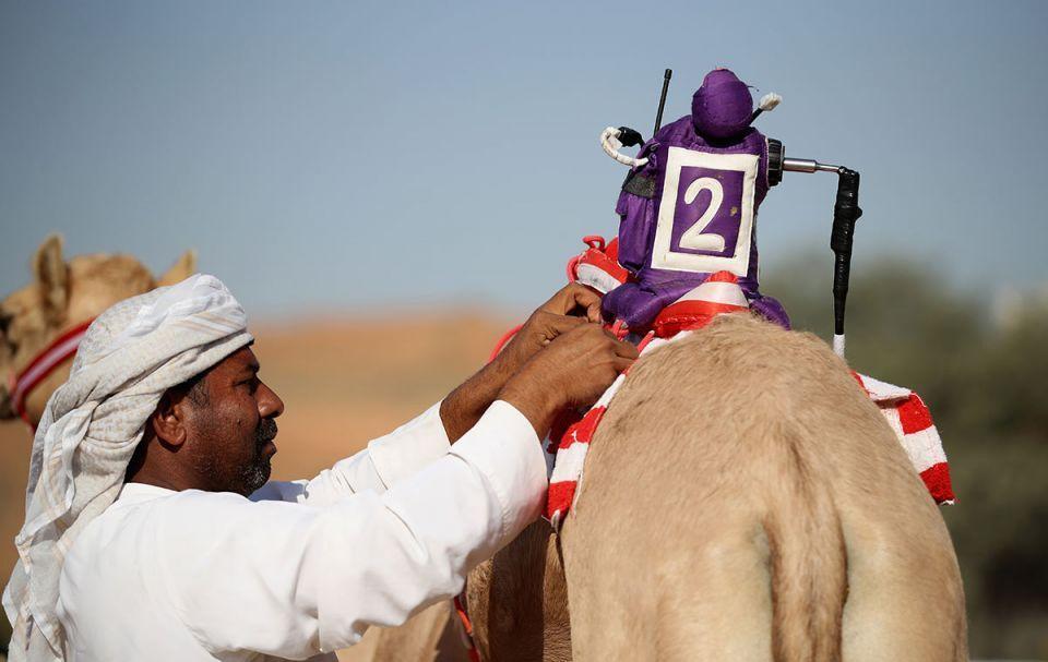 In pictures: Camel racing in Ras Al Khaimah