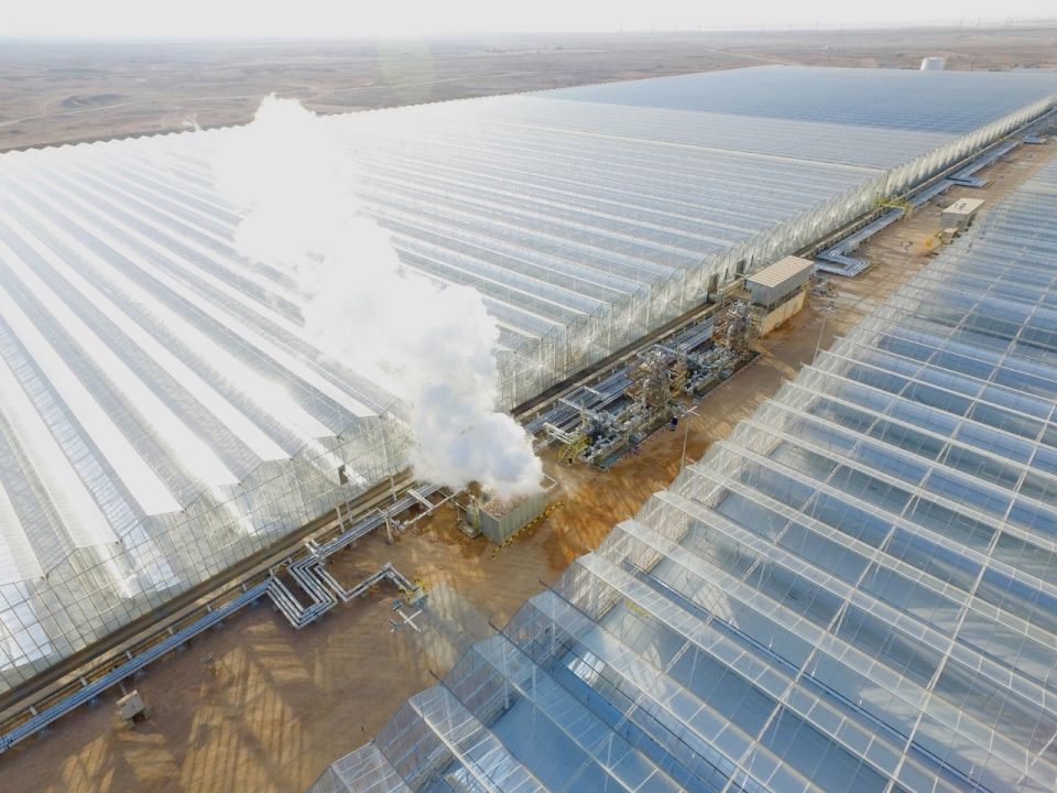 Oman inaugurates giant solar plant to boost oilfield ops