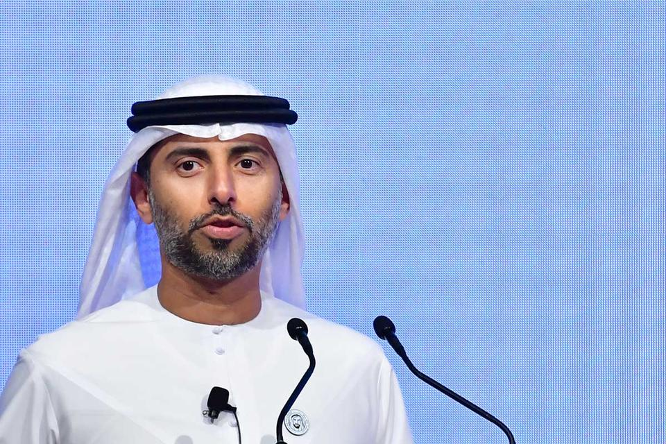 UAE sees OPEC oil capacity 'buffer' offsetting Iran sanctions