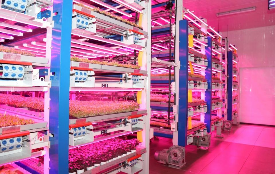 UAE minister backs Gulf's first commercial vertical farm venture